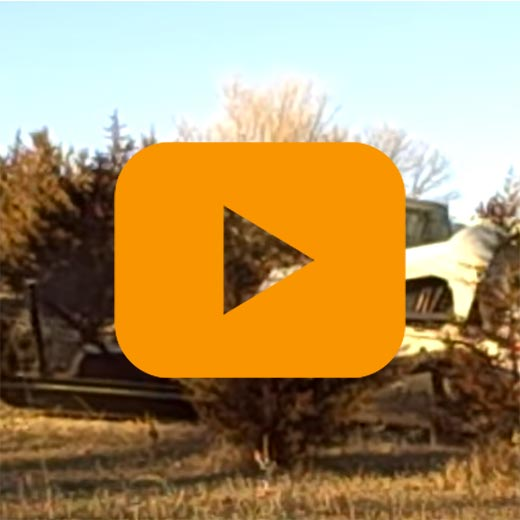 Tree Terminator video play placeholder Grace Manufacturing