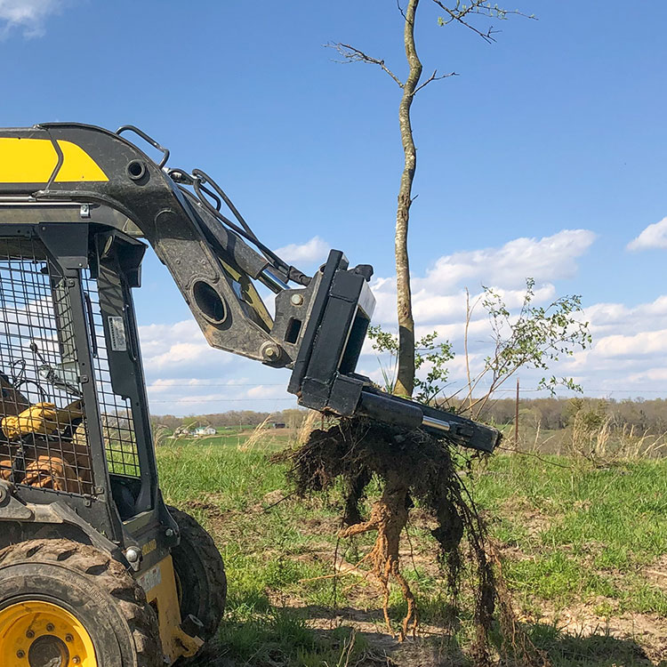 Tree Jaws Tree Puller by Grace Manufacturing